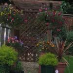 awel y môr garden