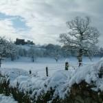 snow rsz (5)