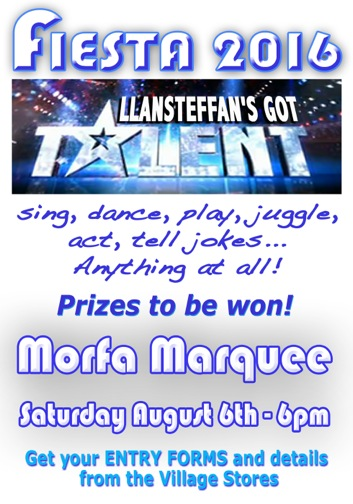 Llansteffan's Got Talent 16 Small