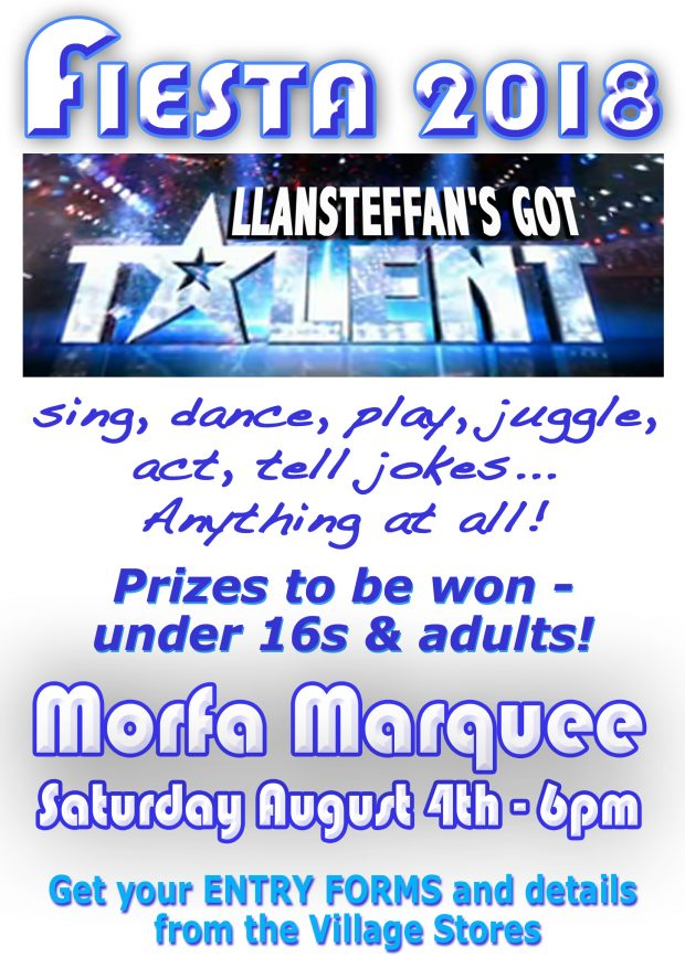 Llansteffan's Got Talent 18